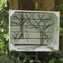 Jan Meijering tekenen & schilderen
